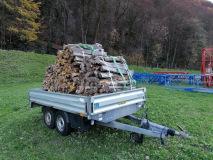 01_Anhänger-und-Brennholz-3-Ster-Holz-bereit-für-drei-Flüge